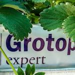 Grotop expert
