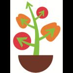 Plant Impact PiNT Fruit