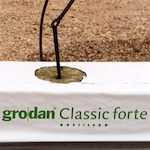 Grodan Classic Forte